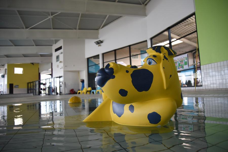 piscineetcomplexeaquatiquespadiumparcpiscineabrest